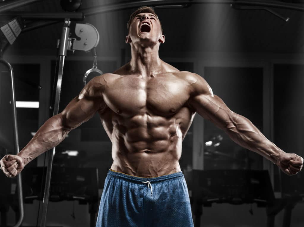 odżywki białkowe masa